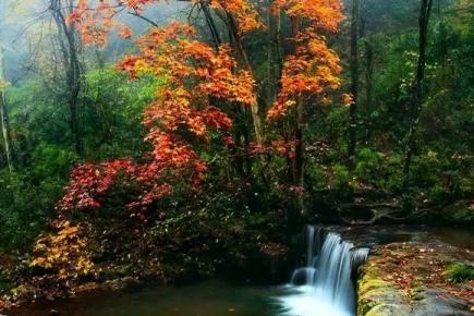 小草坝之春夏与秋冬