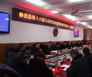 彝良县第十六届人大常委会第十一次会议审议人事事项