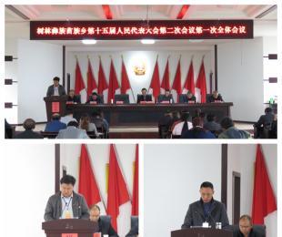 树林彝族苗族乡第十五届人民代表大会第二次会议